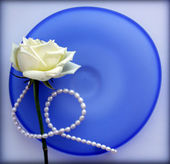 Rose on blue glass plate — Stock Photo