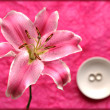 Elegant pink lily and wedding ring — Stock Photo