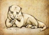 Otter (Lutra vulgaris) , vintage illustration. Black ink drawing on old paper. — Stock Photo
