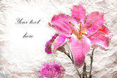 Pink lilies flowers on vintage background — Stock Photo