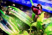 Donker rood tulip flower op blauw-groene achtergrond — Stockfoto
