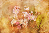 Grunge background with flowers — Stok fotoğraf