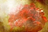Grunge background with red flowers — Stock Photo