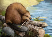 Illustration of beaver sitting on a log — Stockfoto