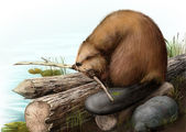 Illustration of beaver sitting on a log — Foto de Stock