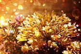 Bright autumnal floral background — Stock Photo