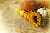 Autumn background with vegetables — 图库照片