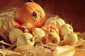 Thanksgiving Background with pumpkins and apples. Retro card — Stock Photo