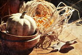 Thanksgiving Background with Pumpkins. Retro card — Stock Photo