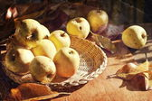 Thanksgiving background with apples and leaves — Stock Photo