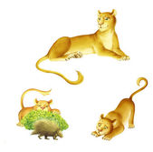 Lioness cartoon — Stock Photo