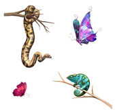 Cartoon snake, chameleon and butterfly — Stock Photo