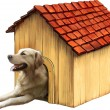 Dog in a dog house. Golden retriver — Stock Vector