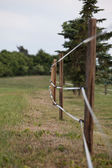 Fenced pasture — Stock Photo