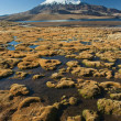 Stock Photo: Snowcap Parinacota