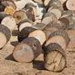 Stock Photo: Wood chunks