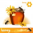 Honey bee — Stock Vector