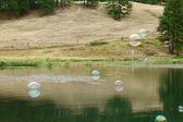 Conceptual Soap bubbles — Stock Photo