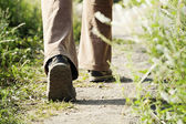 Walking legs in forest, adventure and exercising — Stock Photo