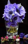 Posy of Anemones and Muscari — Stock Photo