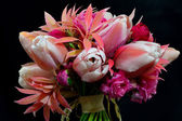 A Posy of Tulips and Pieris Against a Black Background — Stock Photo