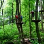Climbing Park 1 — Stock Photo #12785287