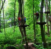 Climbing Park 1 — Stock Photo