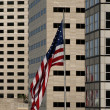 Stock Photo: Flag with buildings