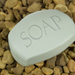 Stock Photo: Soap Bar