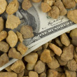 Stock Photo: Money under Stones
