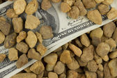Money under Stones — Stock Photo