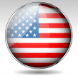 USA flag button — Imagen vectorial