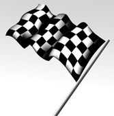 Checkered Flag — Stock Vector