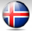 Iceland flag icon — Stock Vector