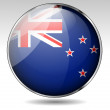 New Zealand flag button — Stock Vector