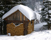 Cabin in snowy forest — Stock Photo