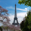 Eiffel Tower in spring — Stock Photo #21722887