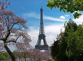 The Eiffel Tower in spring — Fotografia Stock