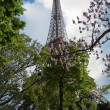 Eiffel Tower among flowering trees — Stock Photo