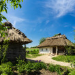 Stock Photo: Ukrainirural 19th-century farmstead