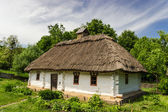 Ukrainian old farmhouse — Stock Photo