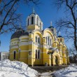 Vladimir Cathedral in winter — Stock Photo