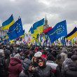 Stock Photo: People and flags at meeting in Kiev