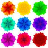 Коллекция цветов для дизайна — Cтоковый вектор