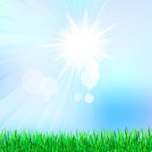 Summer background with green grass — Stock Vector
