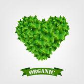 Etiquetas de los alimentos orgánicos. — Vector de stock