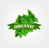 Organic food label. — Stock Vector