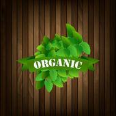Organic food label. — Stock Vector