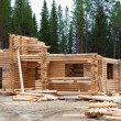 Stock Photo: Construction of log houses