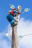 Electric eliminates the accident at the power line pole — Stock Photo